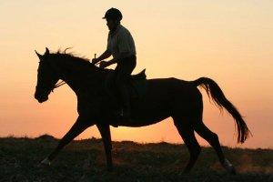 Современные наездники весят больше лошадей
