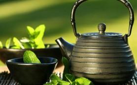 Зеленый чай полезен не всем