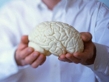 Интеллект понижается с 24 лет