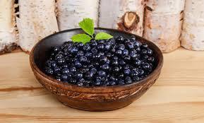 Голубика поможет справиться с последствиями жирной диеты
