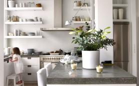 Интерьер и посуда