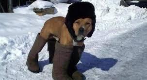 Чувство холода может быть заразным