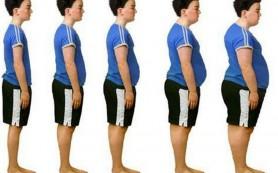 Причины полноты и ожирения