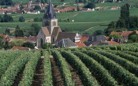 Регион Шампань: едем туда, где рождается праздник