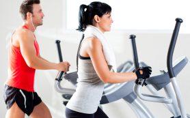 Отличия мужского и женского тренинга