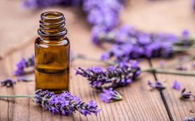 Ароматерапия: запахи, которые взбодрят, успокоят и подарят радость