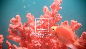 Pantone назвал главный цвет