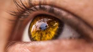 8 интересных фактов о цвете глаз