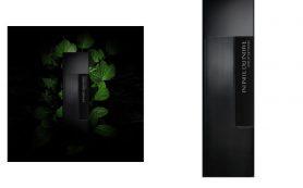 Запах таинственного леса: новый аромат Laurent Mazzone