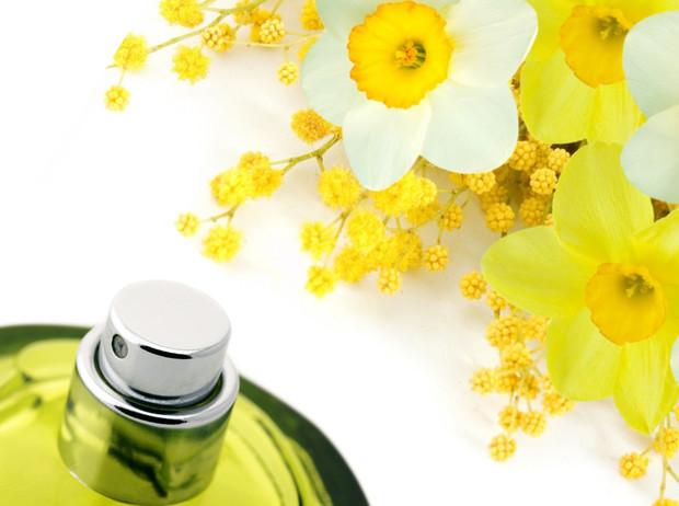 Для влюбленных в весну: лучшие ароматы с мимозой и нарциссом