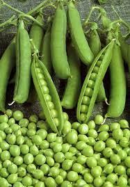 Молодой зелёный горошек