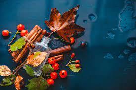 За меня все скажет мой парфюм: 11 лучших ароматов на осень